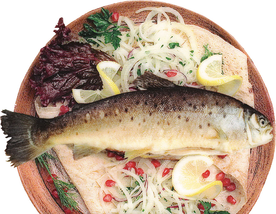 01-forel